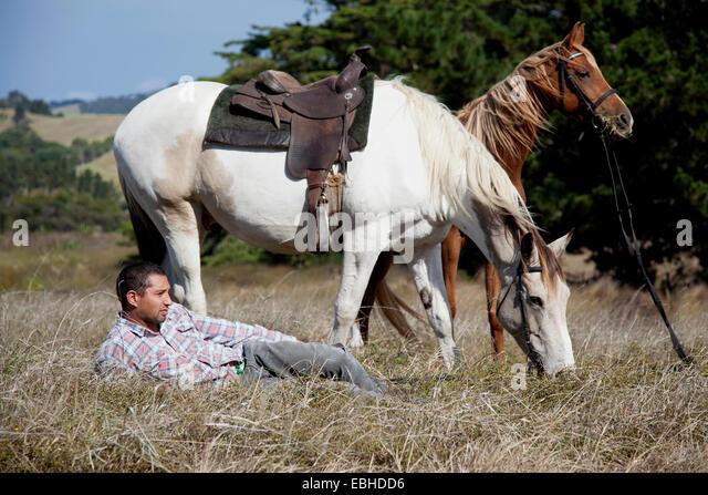 Horse rider taking break on grass, Pakiri Beach, Auckland, New Zealand - Stock-Bilder
