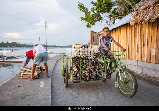 Philippines, Luzon, Sorsogon Province, Donsol, boy carrying wood on a tricycle - Stock-Bilder