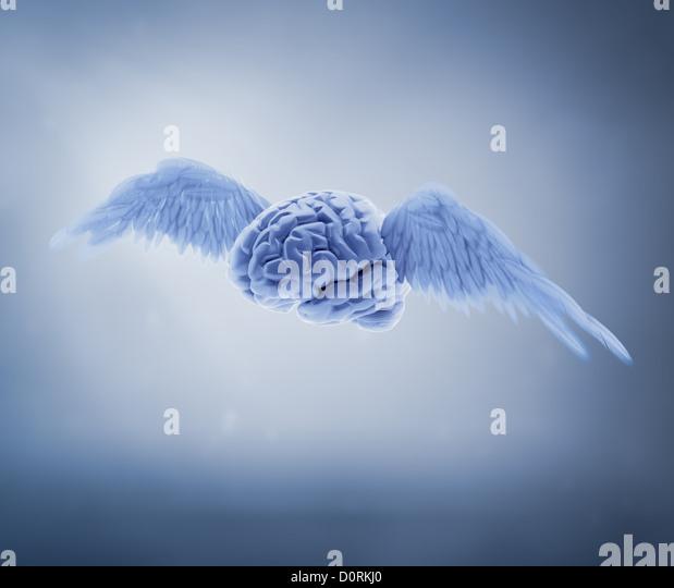 free mind concept - Stock Image