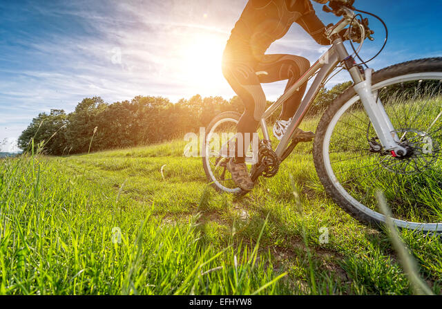 Sport bike, cycling in the beautiful meadow, detail photo, - Stock-Bilder