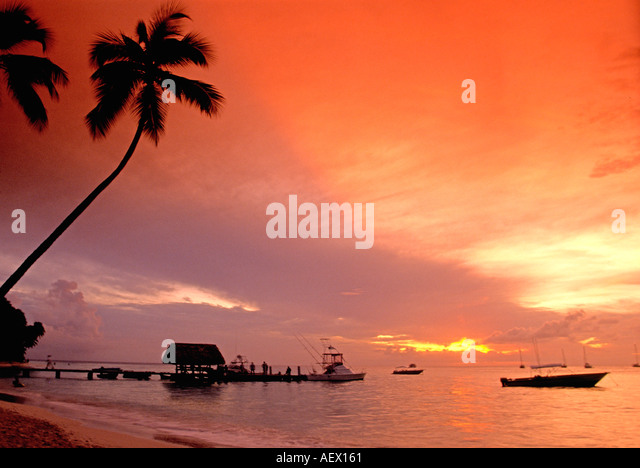 Tobago Pigeon Point sunset caribbean sea palm trees - Stock Image