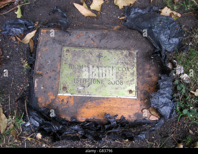 Ashes found in garden - Stock Image