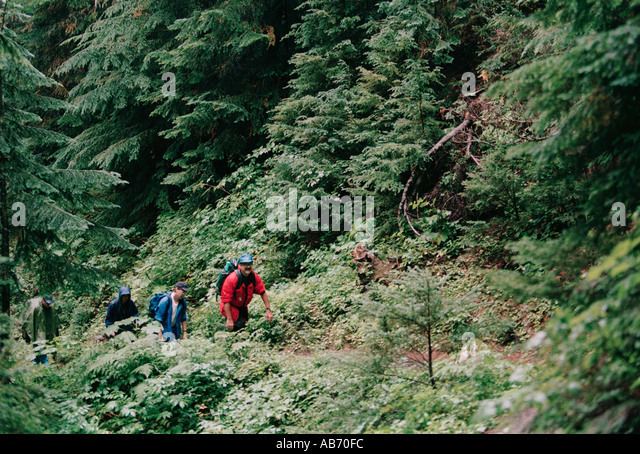 Hikers on the 3 7 mile Cascade Pass Trail North Cascades National Park Washington COPYRIGHT DUANE BURLESON - Stock Image