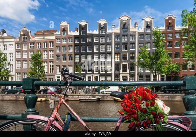 Amsterdam Single Gracht bicycle with tulipsAmsterdam, Netherlands - Stock Image