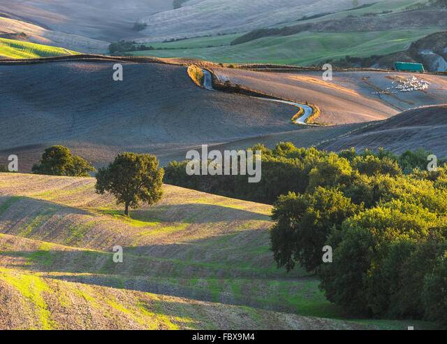 Tuscan landscape the national park of Val d'Orcia, a UNESCO heritage site - Stock Image