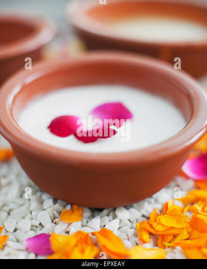 Wild Rose Salt Glow at Ananda Spa, Ananda in the Himalayas, The Palace Estate, Narendra Nagar, Tehri Garhwal, Uttarakhand, - Stock Image