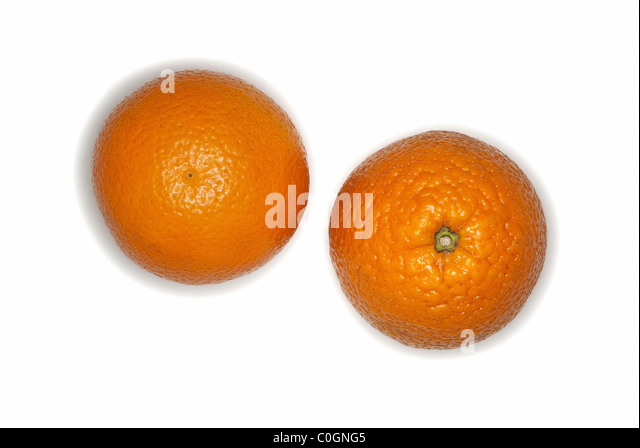 Oranges fruits on white background - Stock Image