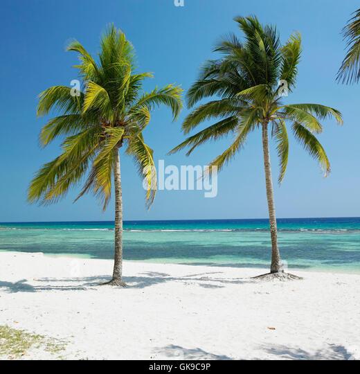 Cuba Travel Agency Orlando