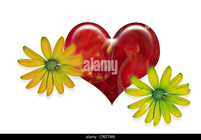 A heart and flowers, illustration - Stock Image