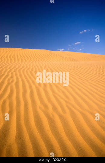 Sam Sand Dunes, Great Thar Desert, Rajasthan, India, Subcontinent, Asia - Stock Image