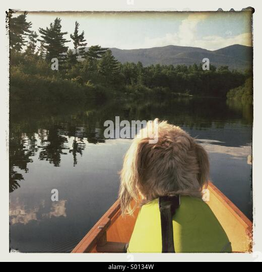 Nita on the Ausable River - Stock Image