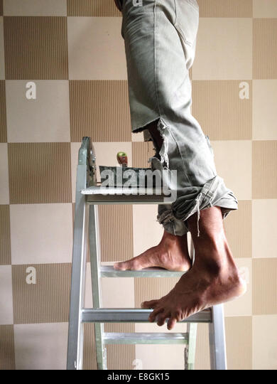 Indonesia, Jakarta Special Capital Region, Jakarta, Man standing on ladder - Stock Image