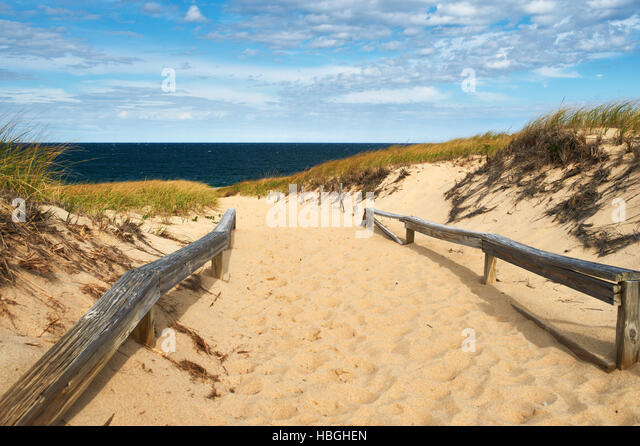 Path way to the beach at Cape Cod - Stock Image
