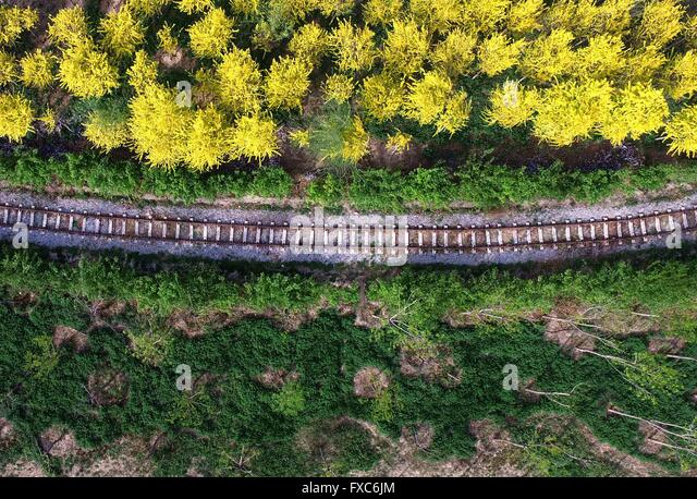 Tianjin. 14th Apr, 2016. Photo taken on April 14, 2016 shows a railway at a country park of Xiqing in north China's - Stock Image
