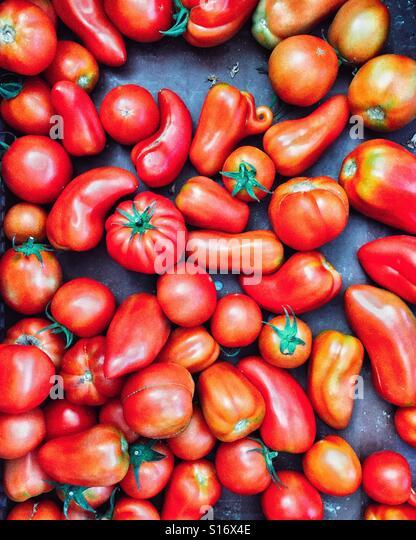 Tomatoes at the market - Stock-Bilder