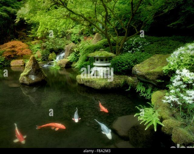 Gardens lantern stock photos gardens lantern stock for Japanese garden koi