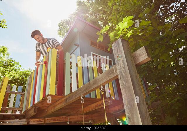 Young man painting tree house, low angle view - Stock Image