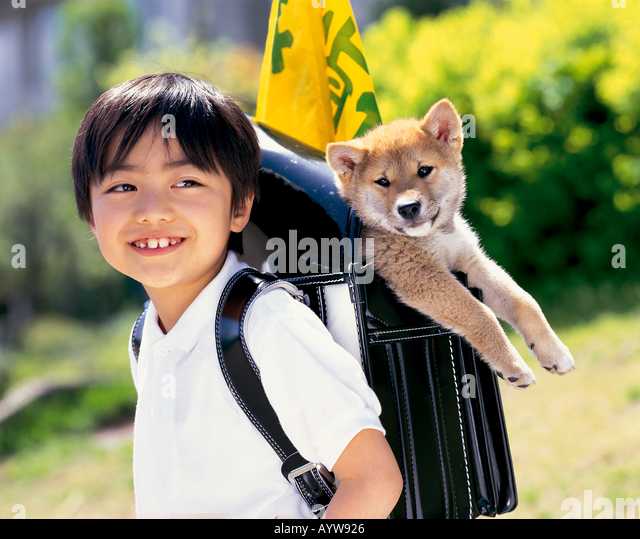 Boy with a dog in his school bag - Stock-Bilder