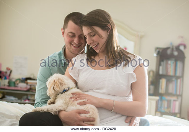 Pregnant couple playing with domestic dog - Stock Image