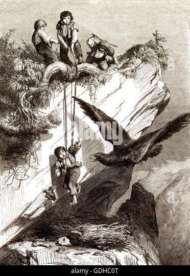 Children plundering an eagle's nest, illustration, 19th century - Stock-Bilder