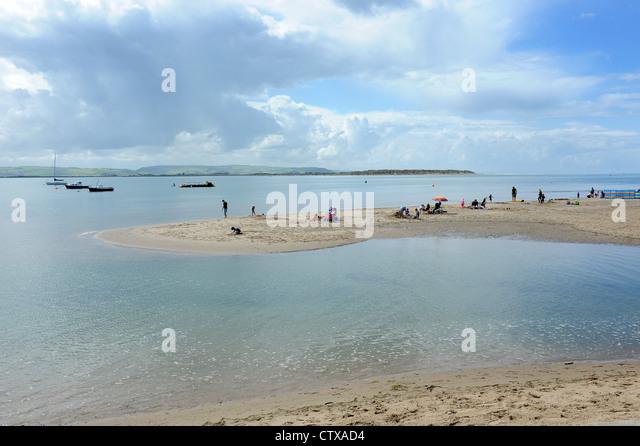 Aberdovey Beach Dogs