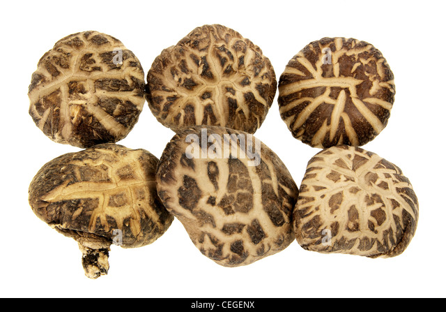 Shitake Mushrooms - Stock Image