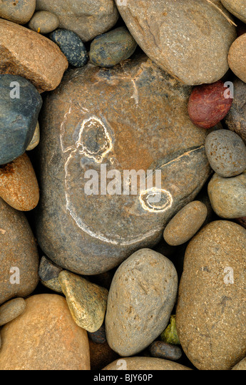 Happy rock seen on the bank of Snake River, near Clarkston, Idaho State,United States of America - Stock-Bilder