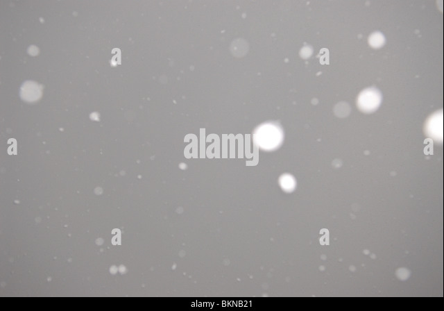 SNOW IS FALLING - Stock Image