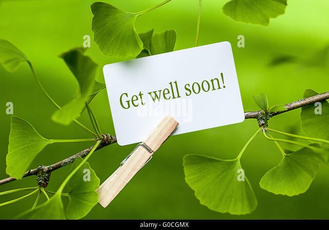 The words ?Get well soon! in a Ginkgo Tree - Stock-Bilder