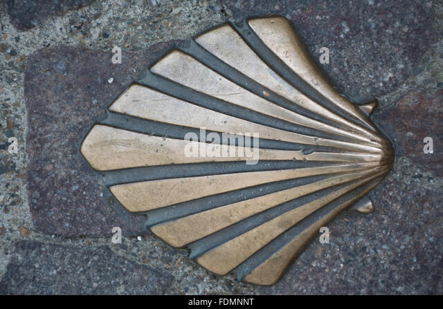 Shell marking the way of St Jacques (Camino de Santiago, chemin de Saint Jacques de Compostelle) in Saint Sever - Stock Image