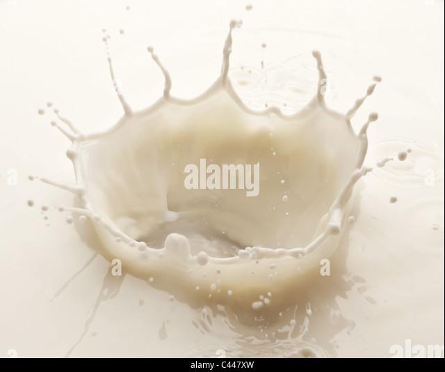 Splash of milk on a white background - Stock Image