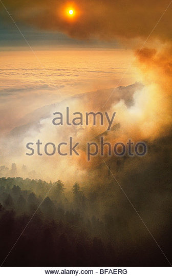 Forest fire obscuring sun (aerial), Big Sur, California - Stock-Bilder