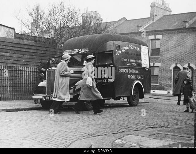 Animal ambulance workers WWII - Stock-Bilder