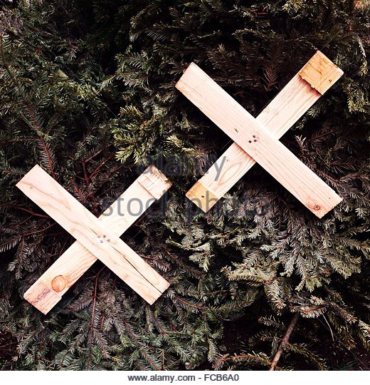 Close-Up Of Wooden Crosses On Plants - Stock Image