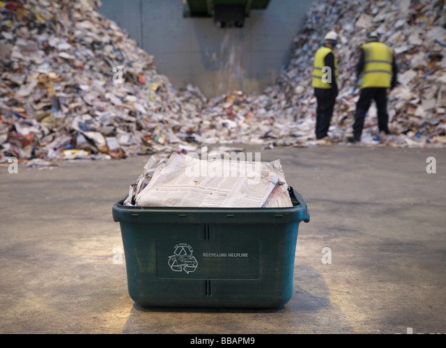 Waste Recycling Box In Plant - Stock Image