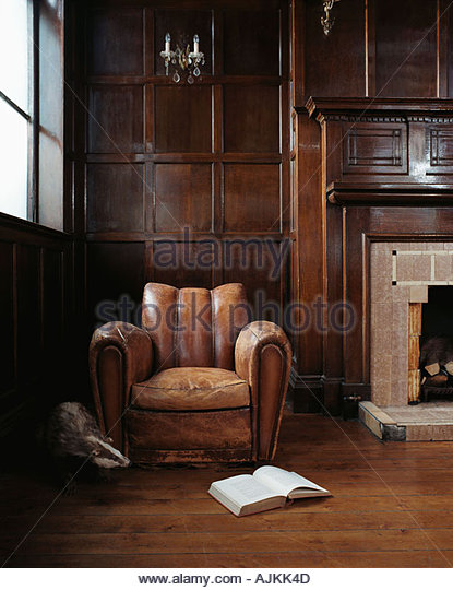 Badger emerging form behind armchair - Stock Image