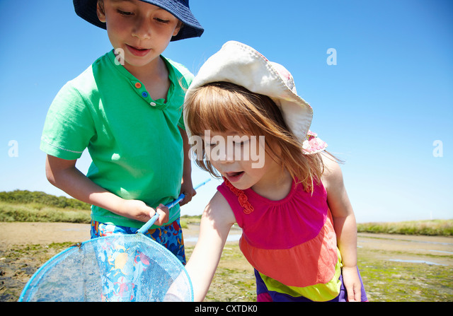 Children fishing with net outdoors - Stock Image