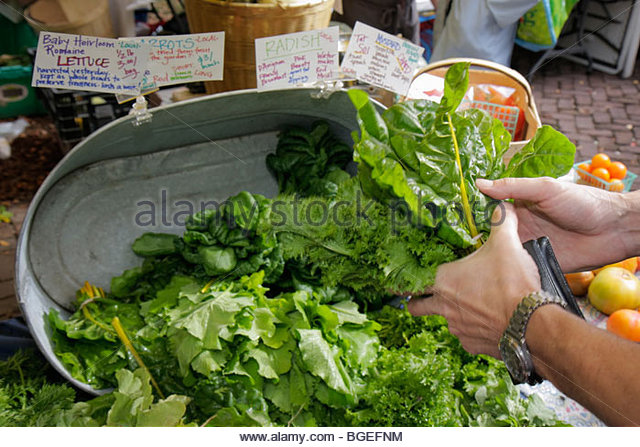 Charleston South Carolina Marion Square Farmers Market community activity fresh produce local products artisans - Stock Image