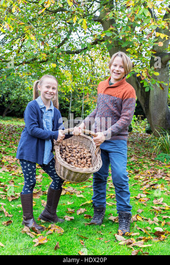 Caucasian brother and sister posing with basket of nuts - Stock Image