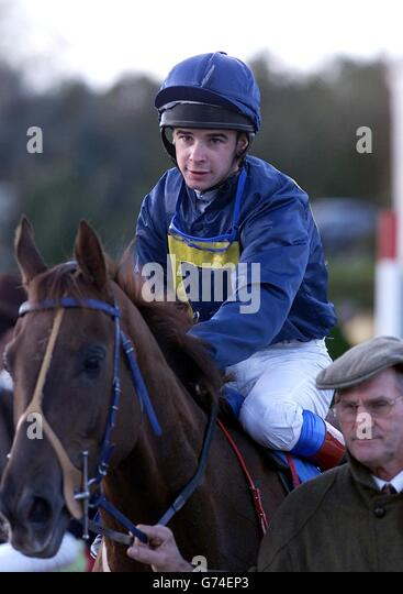Deceitful with Jockey Fran Ferris - Stock Image