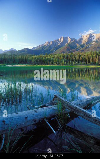 Dog Lake Kootenay National Park British Columbia Canada - Stock Image
