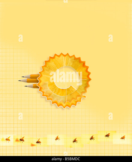 pencil lead pencil shavings pattern graph paper circle bees idea concept - Stock Image