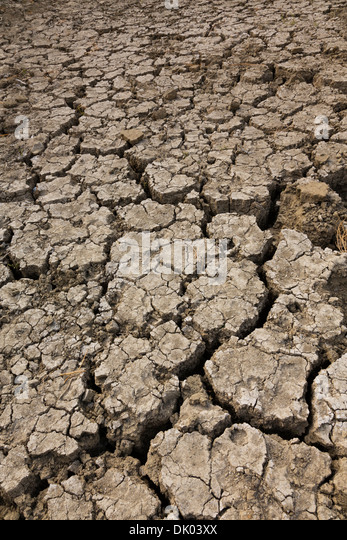 Dried up mud river bed, Gabion dam, Cyprus - Stock Image