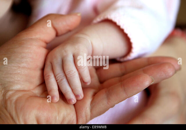The image of hands of parent and the child - Stock Image