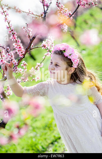 Girl standing in peach tree orchard - Stock Image