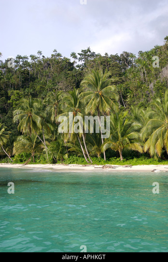 Tropical Indonesian jungle leading to pristine beaches in the Triton Bay region of Irian Jaya Indonesia - Stock Image
