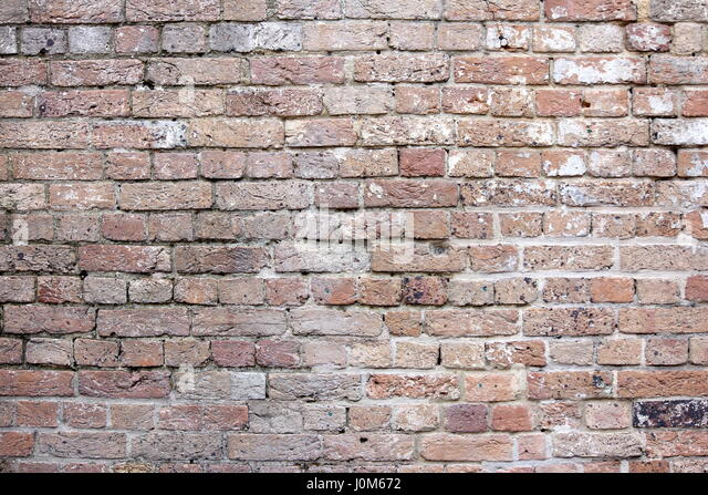 Vintage brick wall great for backgrounds and textures - Stock Image