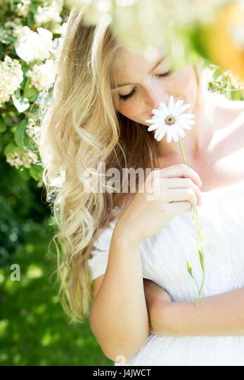 MODEL RELEASED. Young woman holding daisy, smiling. - Stock-Bilder