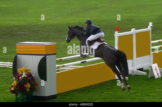 Equestrian show jumping at Calgary Alberta Canada - Stock Image