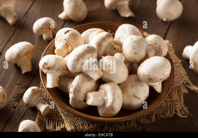 Raw Organic White Mushrooms Ready to Cook With - Stock Image